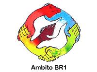 Ambito BR1
